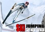 Ski Jump 2010